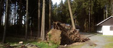 Technická pomoc – odstranění vyvrácených stromů
