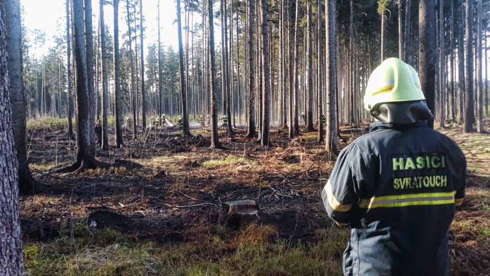 Lesní požár v obci Herálec (20. 4. 2019)
