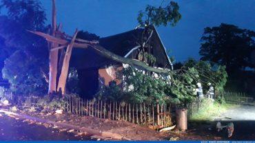 Technická pomoc – odstranění stromu (1.7.2019)